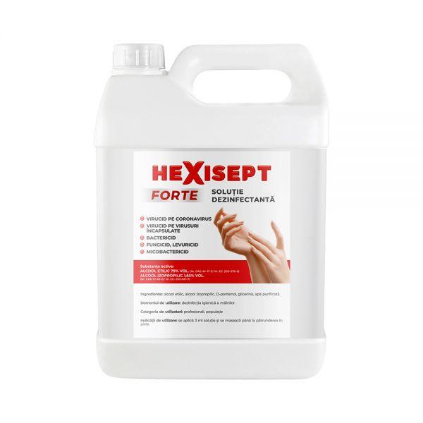 HEXISEPT + gel dezinfectant x 5 L