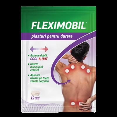 FLEXIMOBIL x 12 plasturi